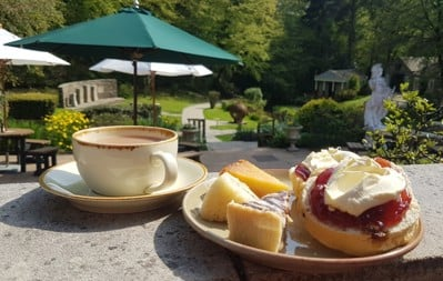 Tea and scone outside cafe and picnic tables at Vindolanda